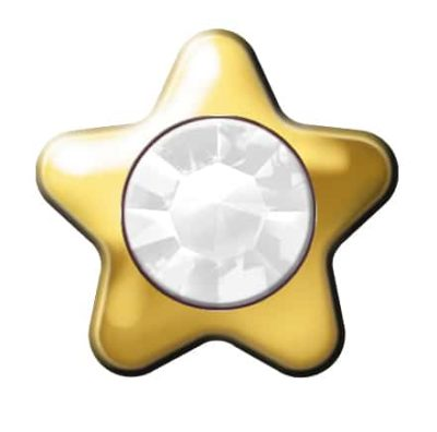 Star Stone - SWAROVSKI ELEMENTS - Crystal